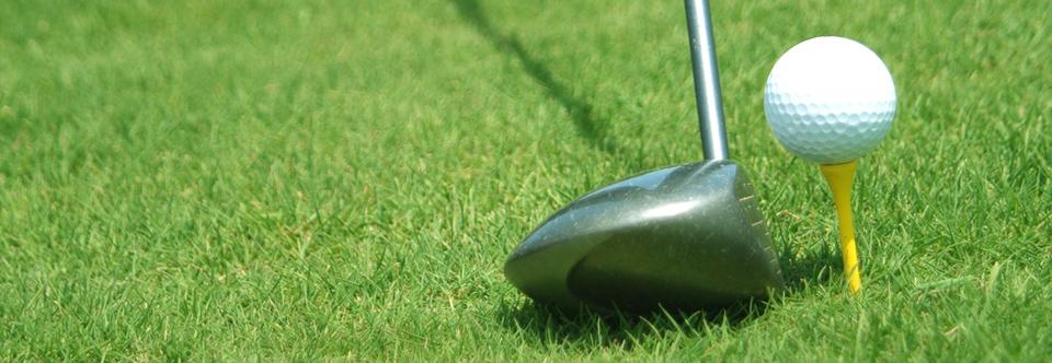 Golf Council